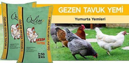 Özlem Tavuk Yemi