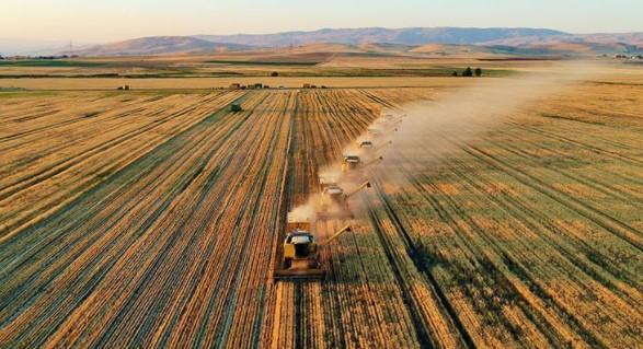 Çiftçiye En Çok Kazandıran Tarım Ürünleri