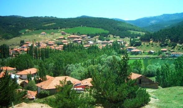 Köyde İş Kurmak İstiyorum Diyenlere Karlı Projeler 2021 Güncel