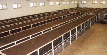 Solucan Gübresi Üretimi KOSGEB Devlet Desteği 2021