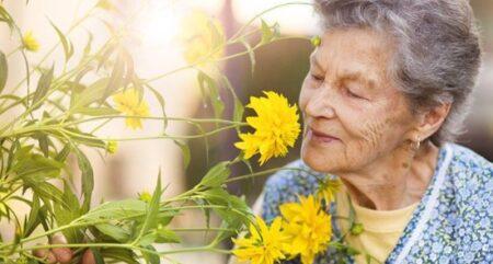 65 Yaş Aylığı Nasıl Alınır? 2021 (Yaşlılık Maaşı)
